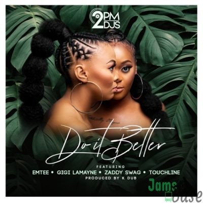 2pm Djs Do It Better Mp3 Download