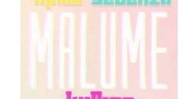 Major Mniiz & Team Sebenza – Malume Ft. Kidbro Mp3 download
