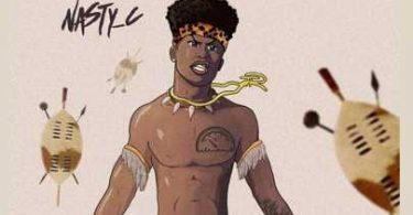 Nasty C – Zulu Man With Some Power Album (mp3 Download)