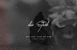 2Lee Stark – Who Gon Stop Me ft. Zuks Mp3