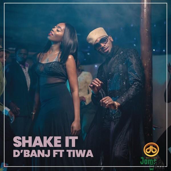 D'Banj Shake It ft Tiwa Savage mp3 download