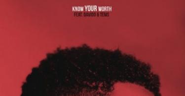 Khalid x Davido x Tems – Know Your Worth (Remix)