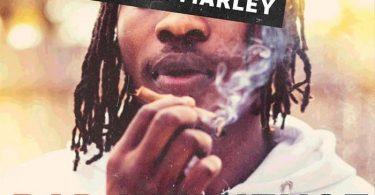 Naira Marley – Bad Influence MP3 Download