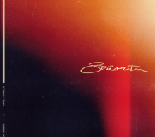 Shawn Mendes Ft Camila Cabello – Señorita Mp3