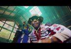 Zoro Kulture Video Download