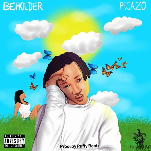 Picazo-Beholder