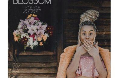 Sha Sha – Blossom EP