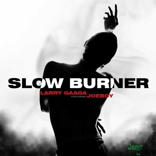 Larry Gaaga Slow Burner