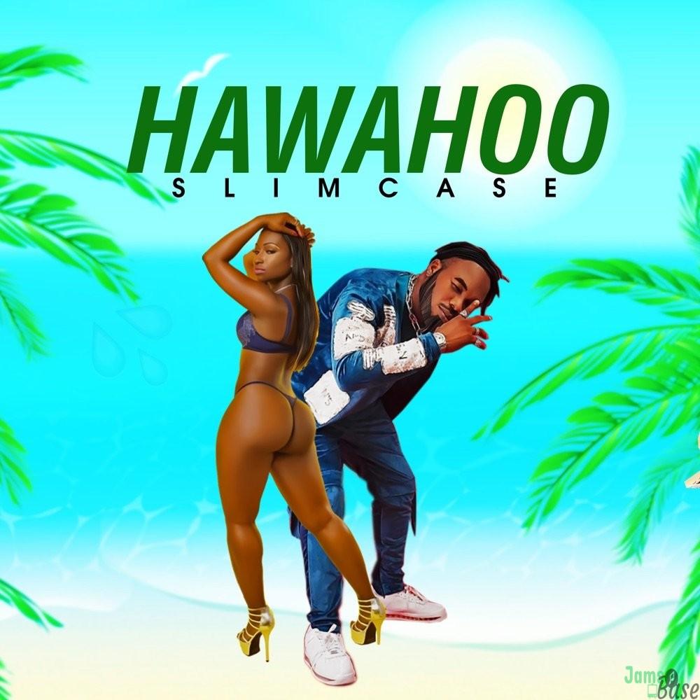 Slimcase Hawahoo
