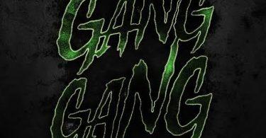 Polo G & Lil Wayne – Gang Gang