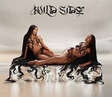 Download Normani Ft Cardi B Wild Side MP3 Download