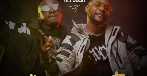 Download Vibes Republik Life of the Party MP3 Download