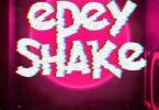 Download Sista Afia E Dey Shake Ft Leflyyy MP3 Download