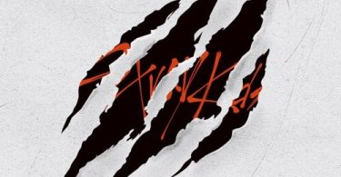 Download Stray Kids CALL Mp3 Download