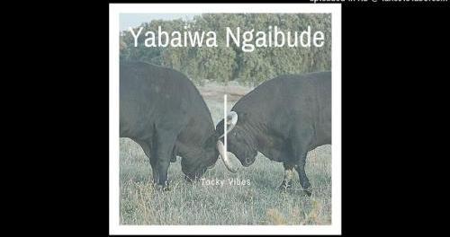 Download Tocky Vibes Yabaiwa Ngaabude MP3 Download